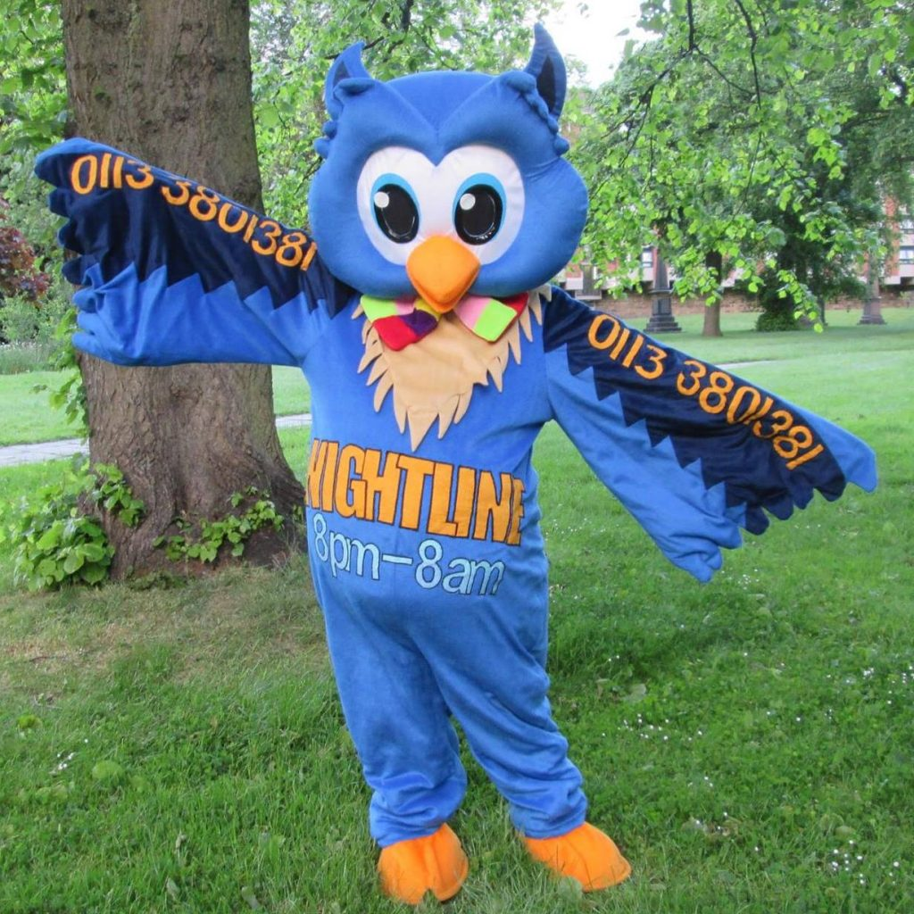 A picture of Nigel the Owl, our beloved mascot.